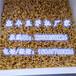 河南豆芽机设备全自动豆芽机器豆芽生产机器