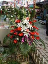 隆岗路铜陵路合裕路东二环附近鲜花店图片