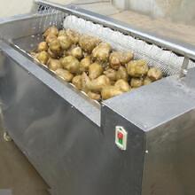 诸城德控机械专业生产清洗机,大蒜漂皮清洗机价格低欢迎选购