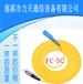 厂家专业生产FC-SC电信级单芯单模2.0/3.0光纤跳线12芯尾纤5米