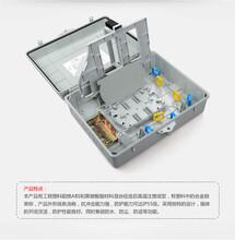 力天厂家16芯光纤分路器箱SMC光纤分钎箱光纤配线箱
