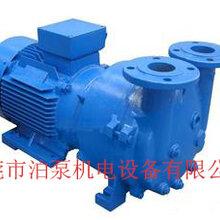 厦门2bva2061水环式真空泵,2bva实验用真空泵图片