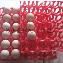 鸡蛋托塑料,普通鸡蛋托,土鸡蛋托,笨鸡蛋托,笨鸡蛋托盘,鸡蛋托厂图片