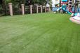 幼儿园彩虹跑道草坪,人造草坪施工