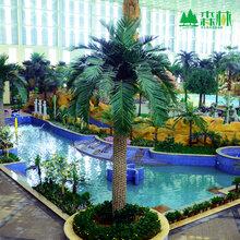 仿真加拿利海枣树厂家广州优质仿真树工厂全国绿化工程承包图片