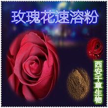 玫瑰花提取物玫瑰花浓缩粉玫瑰花浸膏粉玫瑰花速溶粉