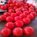 杭州水面警示浮球嘉兴水电站拦船浮球养殖浮子厂家供应
