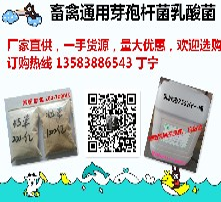 飼料添加劑,微生態制劑,豬飼料添加劑,禽飼料添加劑圖片