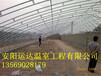 建一个双层日光温室造价青岛日光温室建设成本