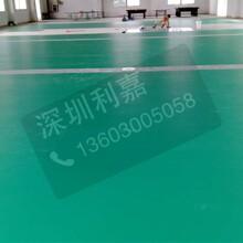 广东深圳利嘉水晶沙4.5MM羽毛球胶地板图片