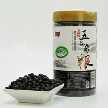 有机黑豆550g/罐新货纯天然粗粮绿芯黑豆图片