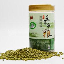 有机绿豆650g/罐新货真空包装五谷杂粮绿豆粥图片