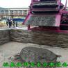 顶管泥浆处理脱水机