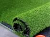 人工草坪室内室外专用仿真草?#27827;?#20799;园足球场专用草坪