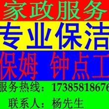金阳家政公司,金阳保洁公司,金阳专业清洗油烟机
