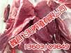 河北野猪肉,河北野猪肉的优点,飞阳野猪养殖