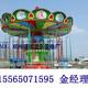 湖北荆州飞椅3