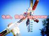 大型游乐设备新型极速风车价格表嘉信游乐