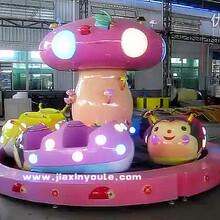 嘉信游乐推出十一热销产品瓢虫乐园儿童游乐设备图片