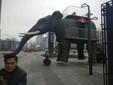 上海机械大象首秀惠州展览机械大象设备租赁图片