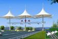 海南膜結構景觀棚廣場膜結構景觀棚大型公共場所景觀棚定做