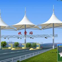 安阳标志性膜结构广场公园膜结构景观棚遮阳棚图片
