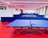 北京乒乓球地板价格是多少--北京鹏辉乒乓球地板为你解答