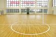 篮球场运动地板篮球馆塑胶地板PVC篮球塑胶地板