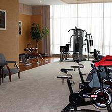 舒华商用家用自发电立式健身车SH-A1100G