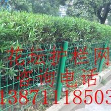 绿化围网价格公路两边绿化带用的铁丝网多少钱一米湖北荆门哪里有卖