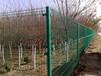 松滋市果園護欄網果園專用雙邊絲彎頭護欄網安裝不受地形影響