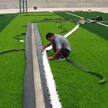 塑胶跑道,人造草坪,硅pu球场,环氧地坪,体育器材,pvc运动地板图片