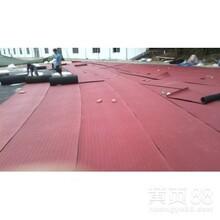 塑胶跑道,硅pu球场,pvc运动地板,环氧地坪,人造草坪,体育器材,运动木地板,拼装悬浮地板图片