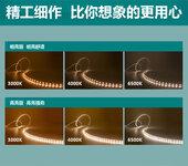 飞利浦220V灯带LED虹韵灯条商业专用灯带灯丝