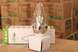 耀星系列LED燈泡三雄極光總經銷商