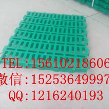 500600mm塑料漏粪板双筋加厚羊用漏粪板猪场羊场专用塑料漏粪地板