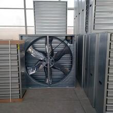 长沙中凯润源养殖热风炉负压风机行业领先图片