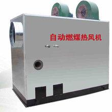 中凯润源温室燃煤水暖热风机育秧温室加温暖风炉图片