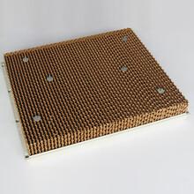 北京温室大棚通风降温系统风机湿帘生产厂家图片