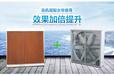 武汉温室通风降温温室负压风机水帘幕墙