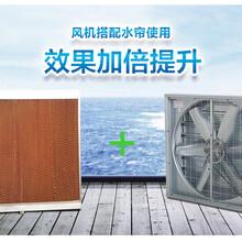 温室大棚降温风机,温室风机湿帘图片