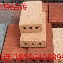 武汉陶土烧结砖多种定制质优价低