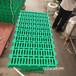 云南楚雄塑料羊床板10050厘米羊糞板養羊塑料墊板
