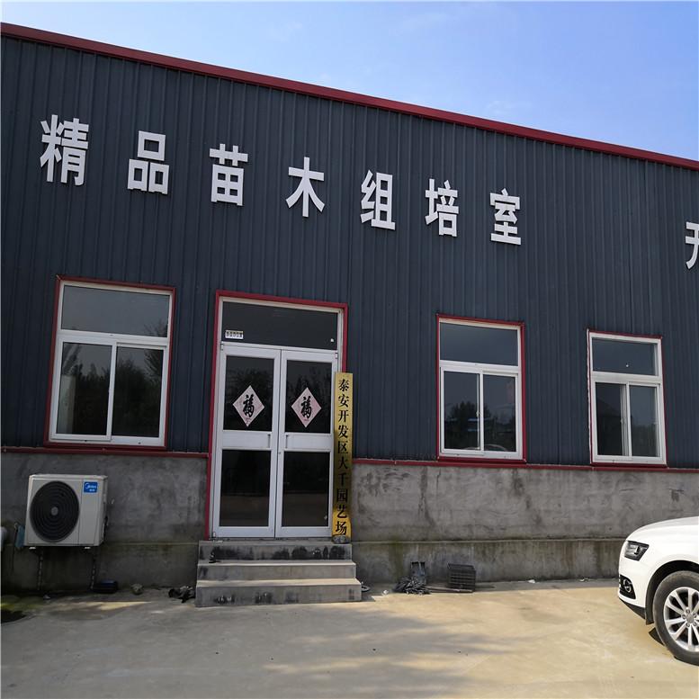 泰安惠農農業科技有限公司