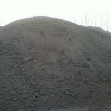 大庆2#a低硫石油焦/延迟石油焦图片
