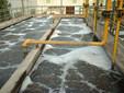 东莞生活污水水质检测什么项目?
