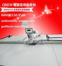 奥玲大型花样机RN80X250缝纫机车形状专用花样车大缝纫机图片