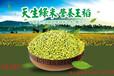 香汤丸有机绿稻米