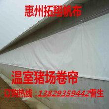 辽宁猪舍卷帘布厂家吉林养殖场卷帘价格-沈阳畜牧场窗帘布图片