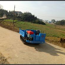 2017款长沙嘉冠农用型2吨款履带式运输车履带式拖拉机图片